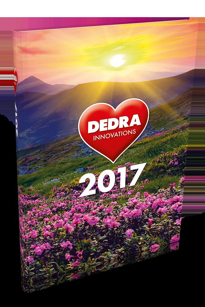Diář organizér 2017na denní záznamy