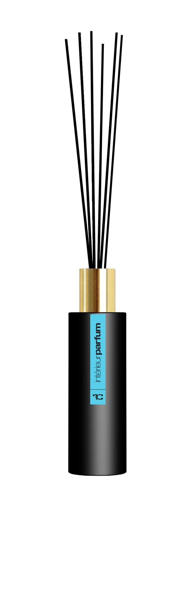 FC8398-Interiérový parfum LAGOON 80 ml