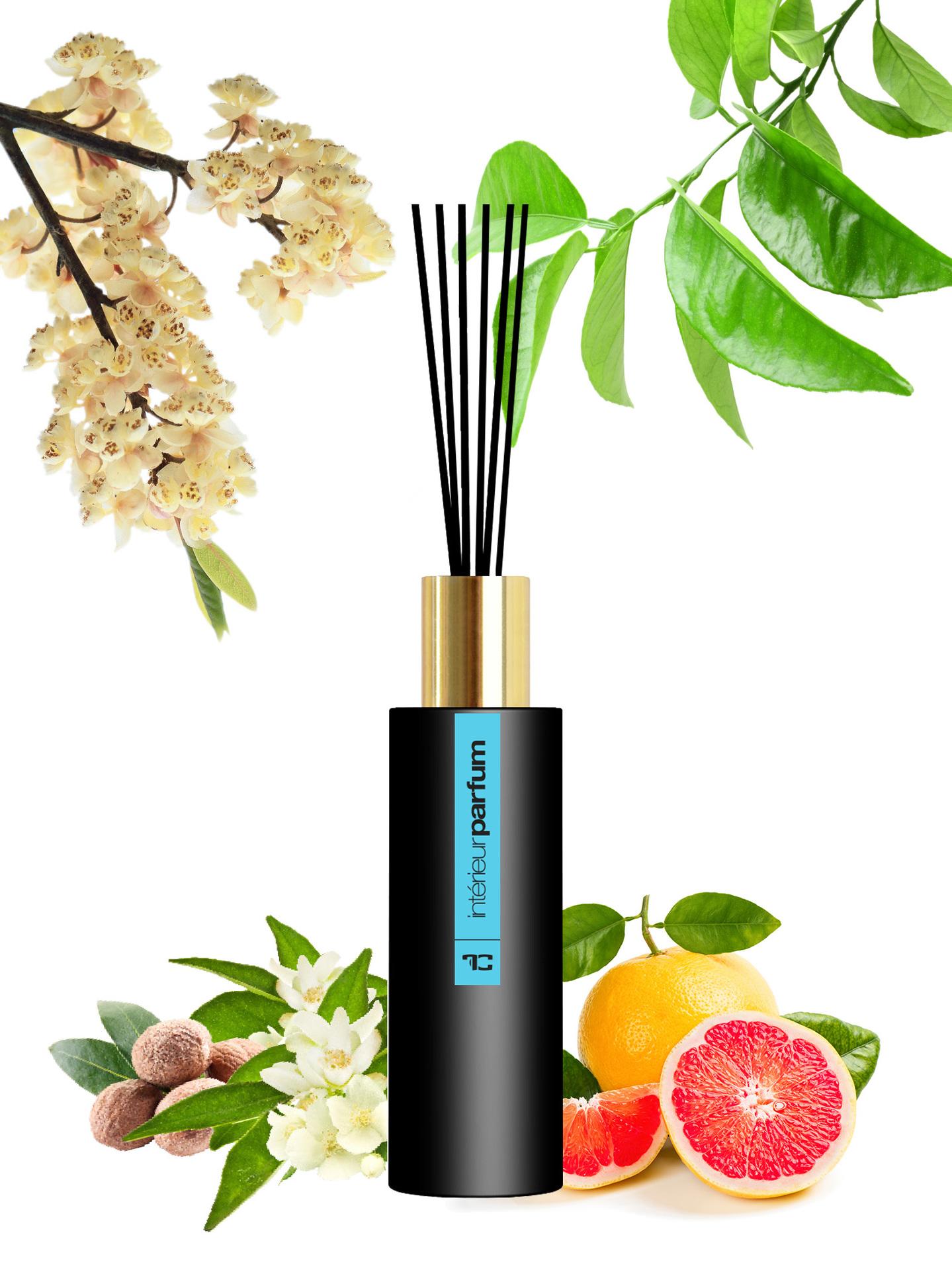 Interiérový parfém, LAGOON, vonný roztok s vysokým obsahem parfémové kompozice