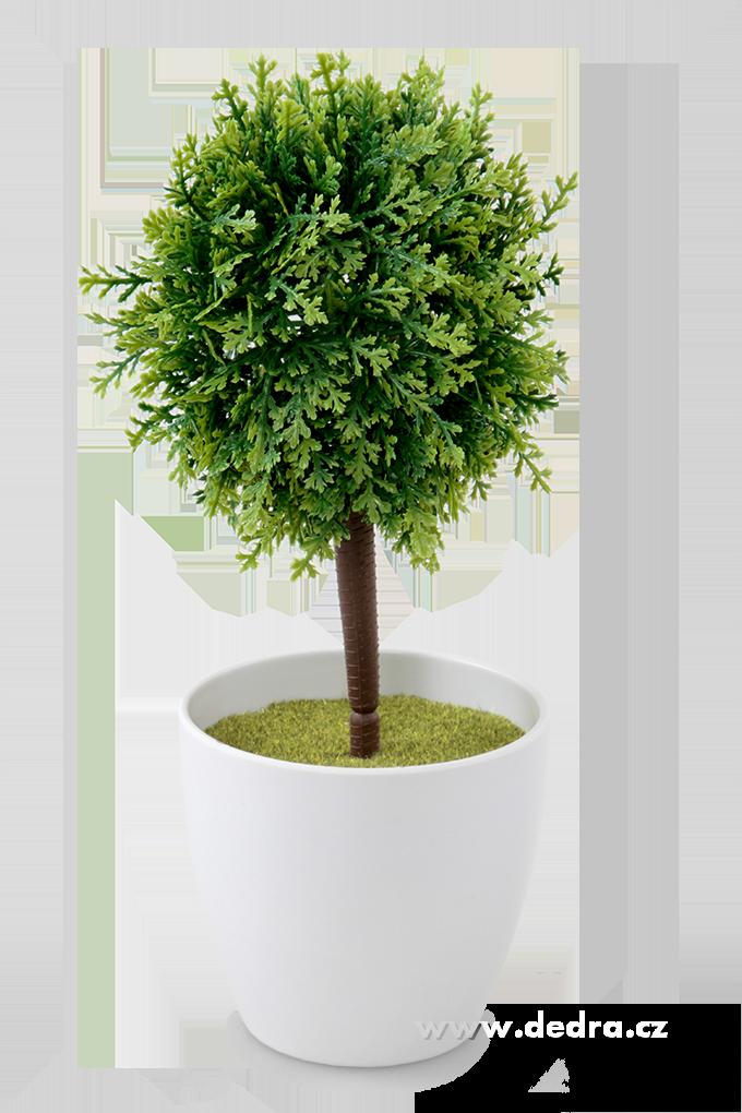 Tújka na kmínku ateliérový stromek zelený