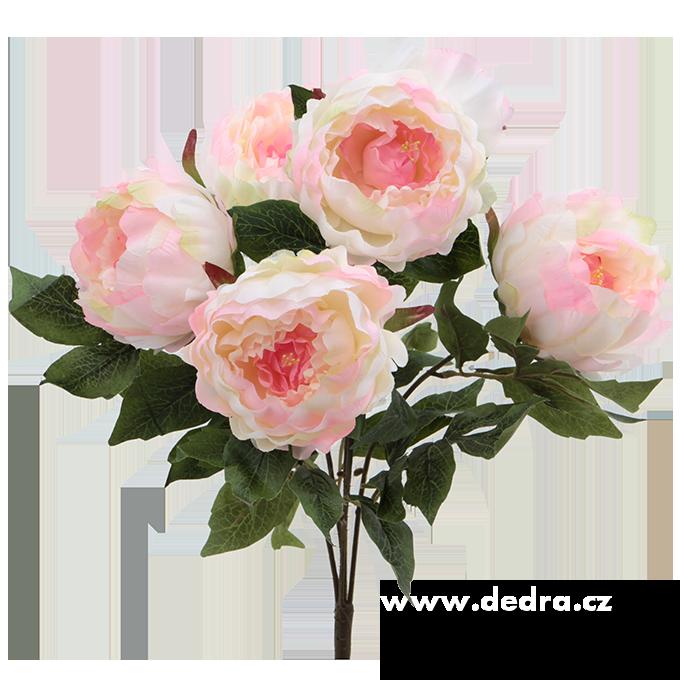Pugét Pivoněk bílo-růžová v.45 cm ateliérová květina