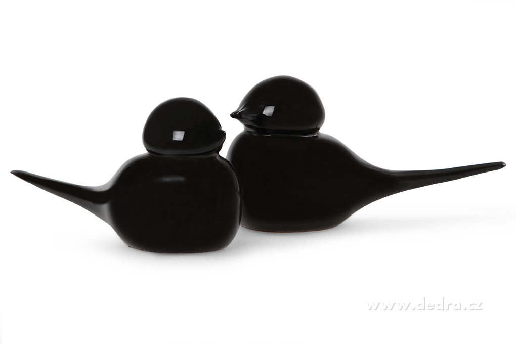 Glam set of 2 birds 2 ks dekorat.ptáček black