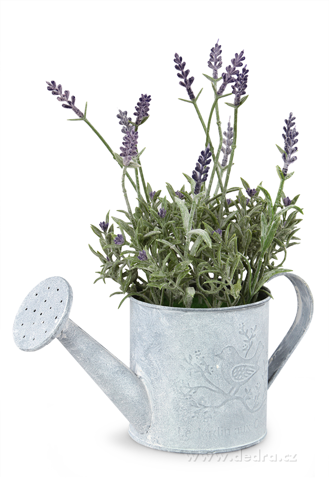 Levandulová dekorace plechová kropička