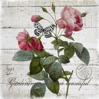 Obraz 2 ks, růže