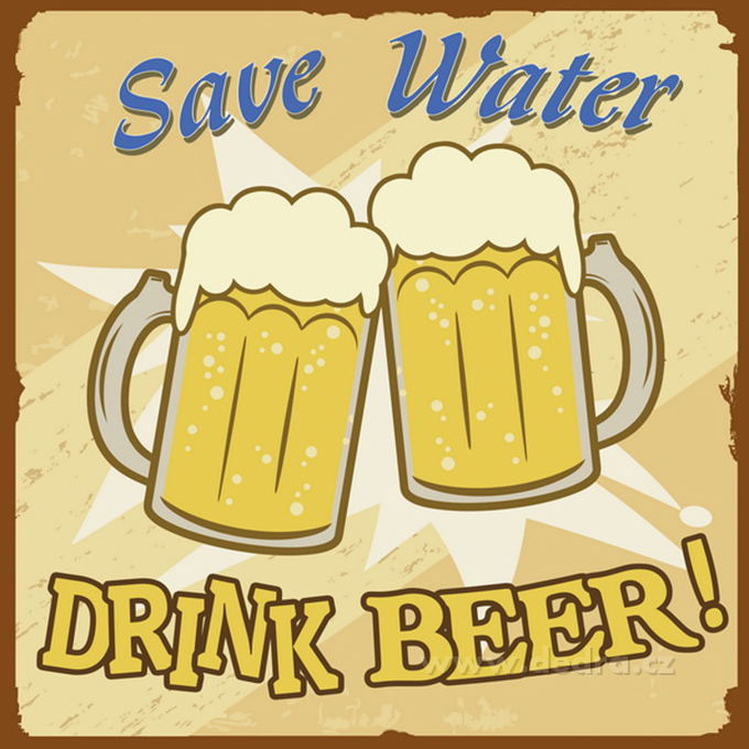 Obraz na plátně SAVE WATER DRINK BEER 28 x 28 cm digitální tisk