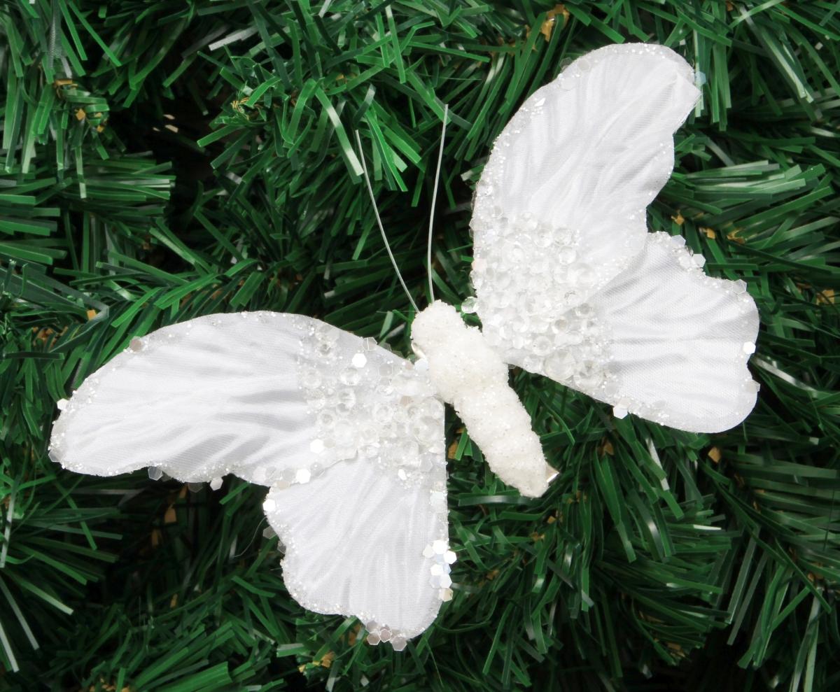 Noční motýl, s křídly