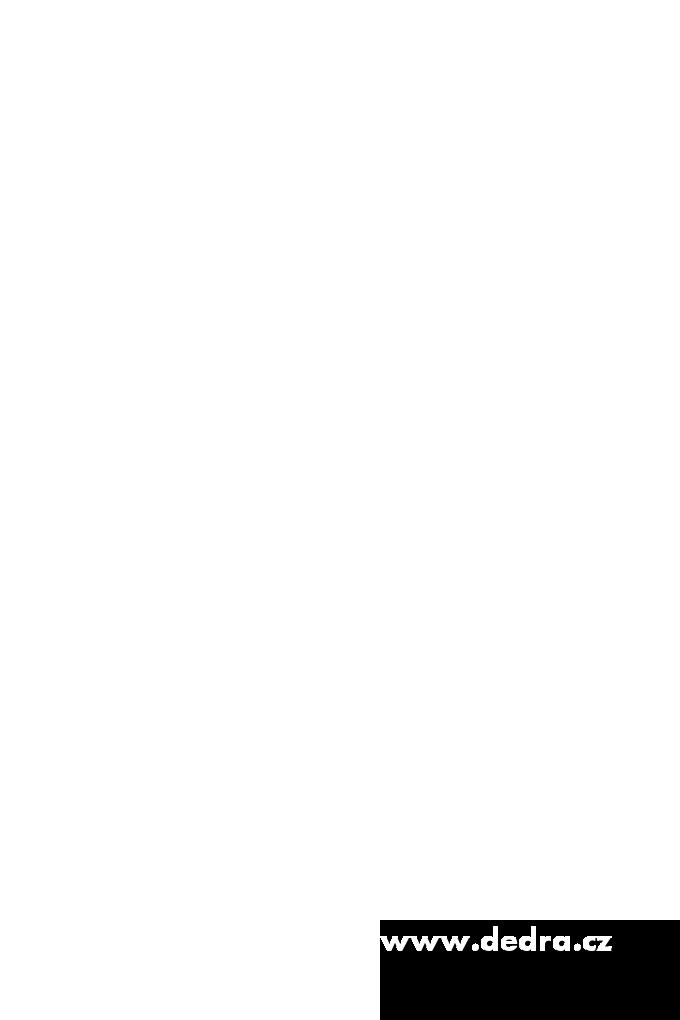 "AA0450-24 ks samolepiek ""AKTUÁLNA CENA"" (1 arch)"