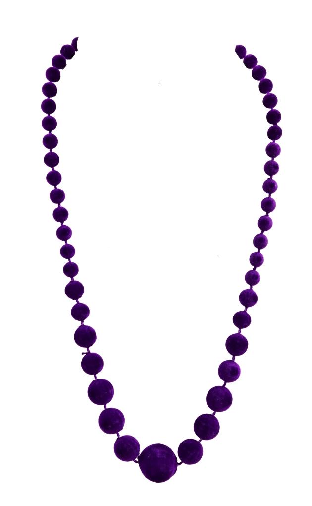 Sametové korále fialové