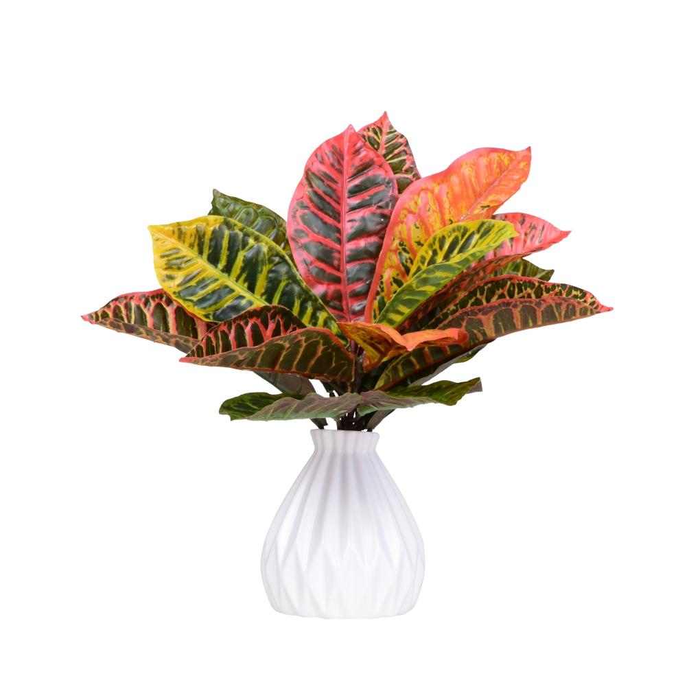 Trs listů KROTON výška cca 45 cm ateliérová květina