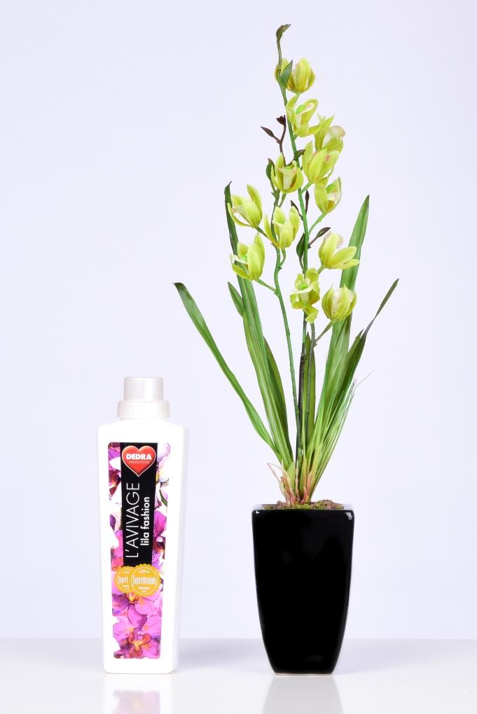 DA98451-ORCHIDEA v kvetináči zelená ateliérová kvetina