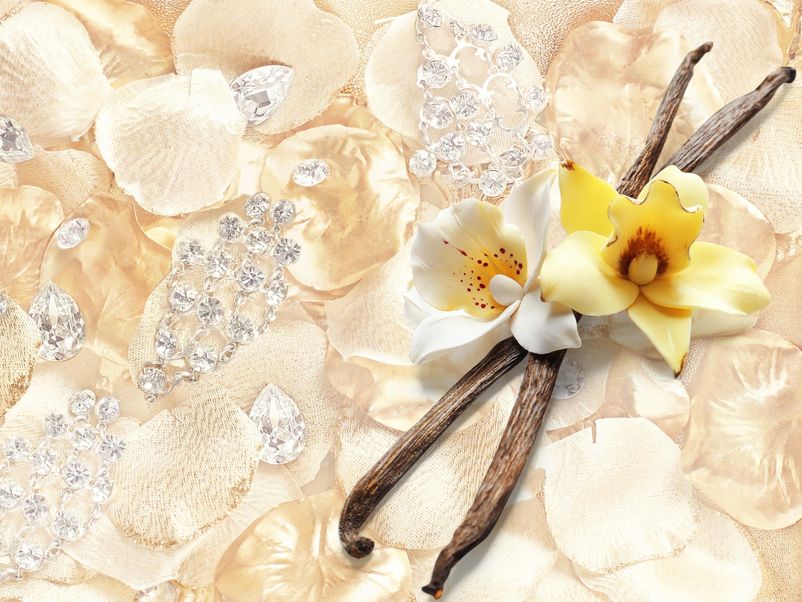 TA0061-L'AVIVAGE 2in1 fleur de vanille avivážny kondicionér