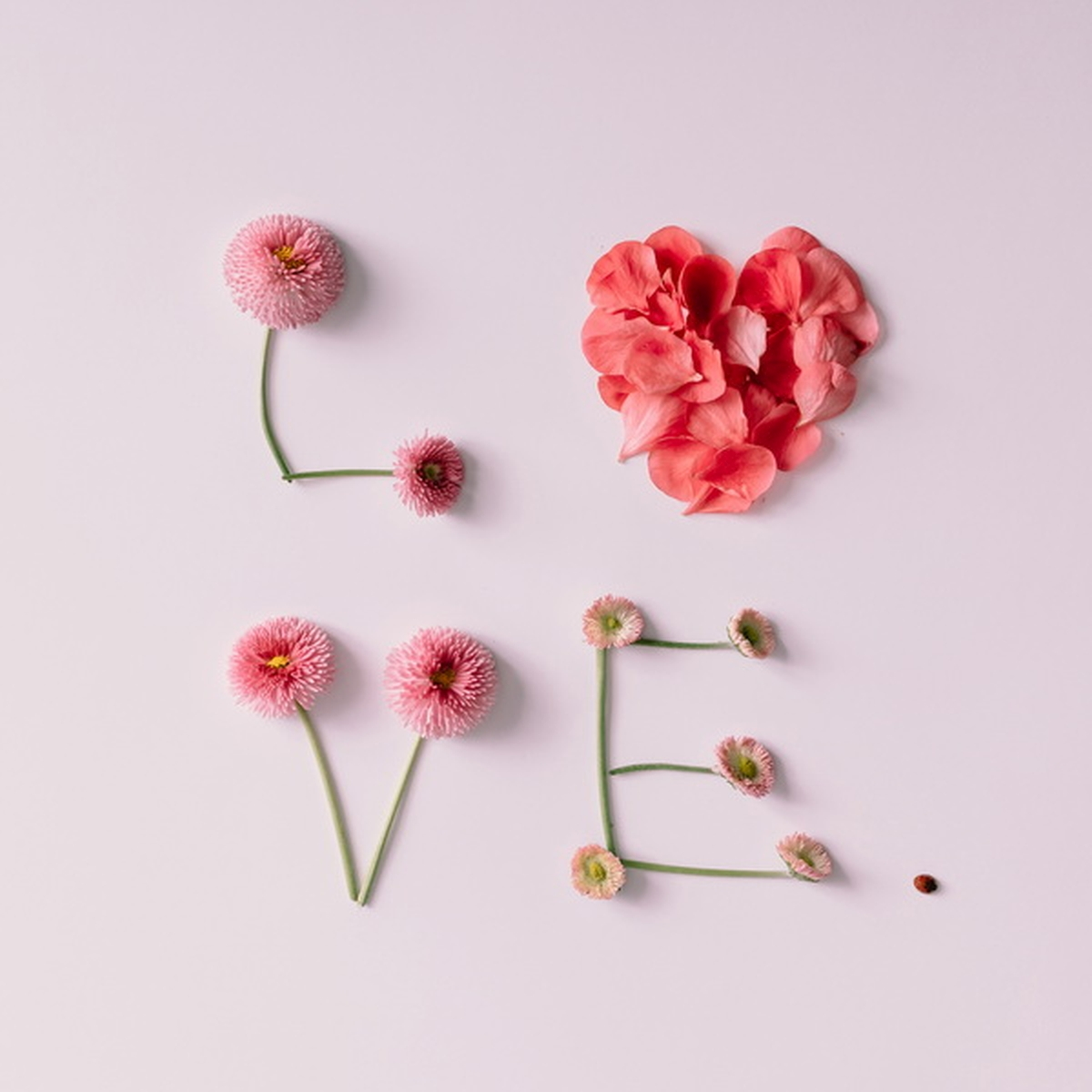 OBRAZ na plátne 28x28 cm - Love