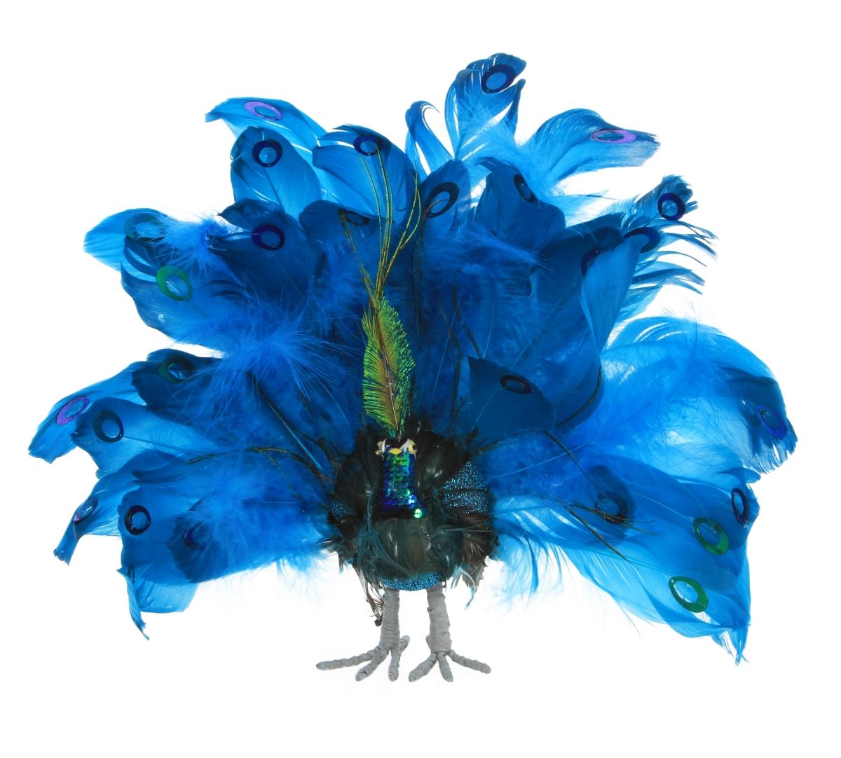 Stojící PÁV, s pravými pavími pery