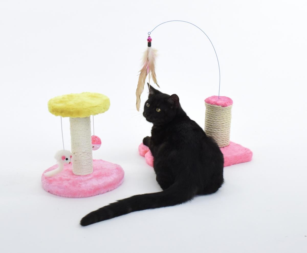 Kočičí škrabadlo, s ptačími pírky