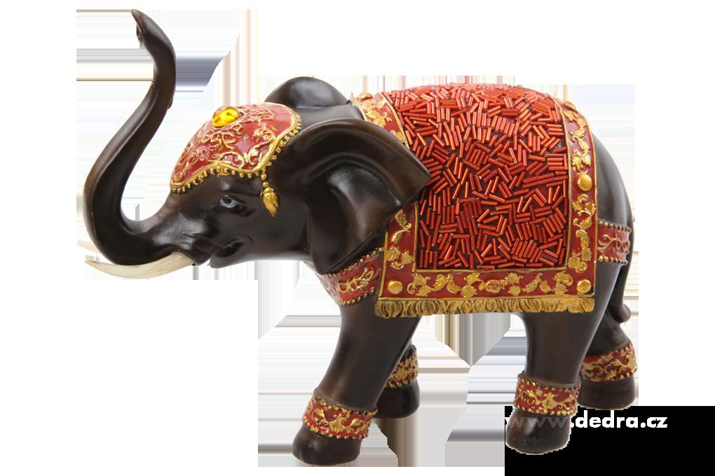 Slon indický bohatě, zdobený