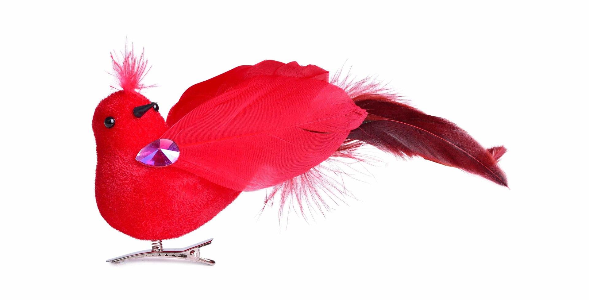 Ptáček s jemnými pírky, červený