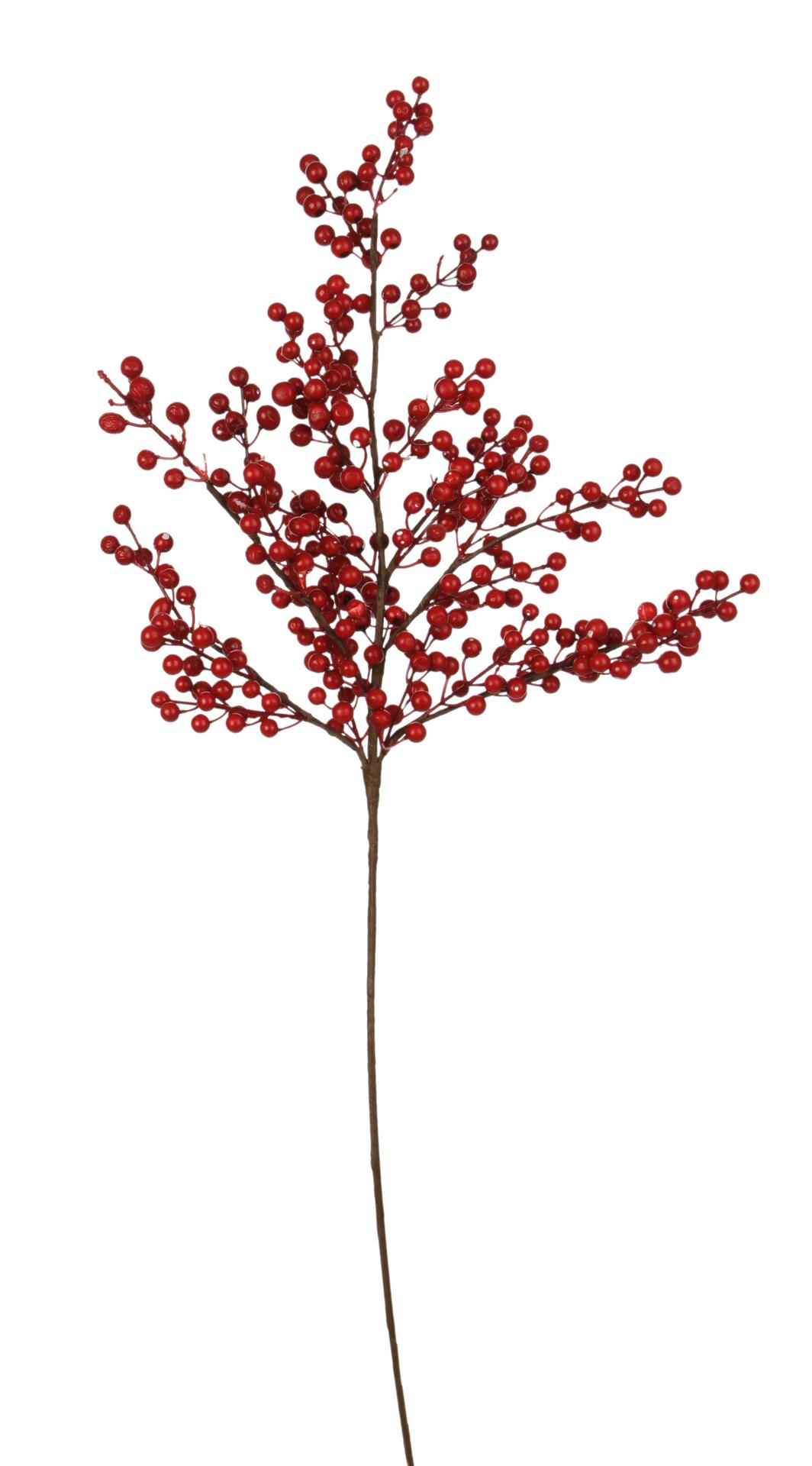 Bohatá větev s červenými bobulemi délka cca 105 cm