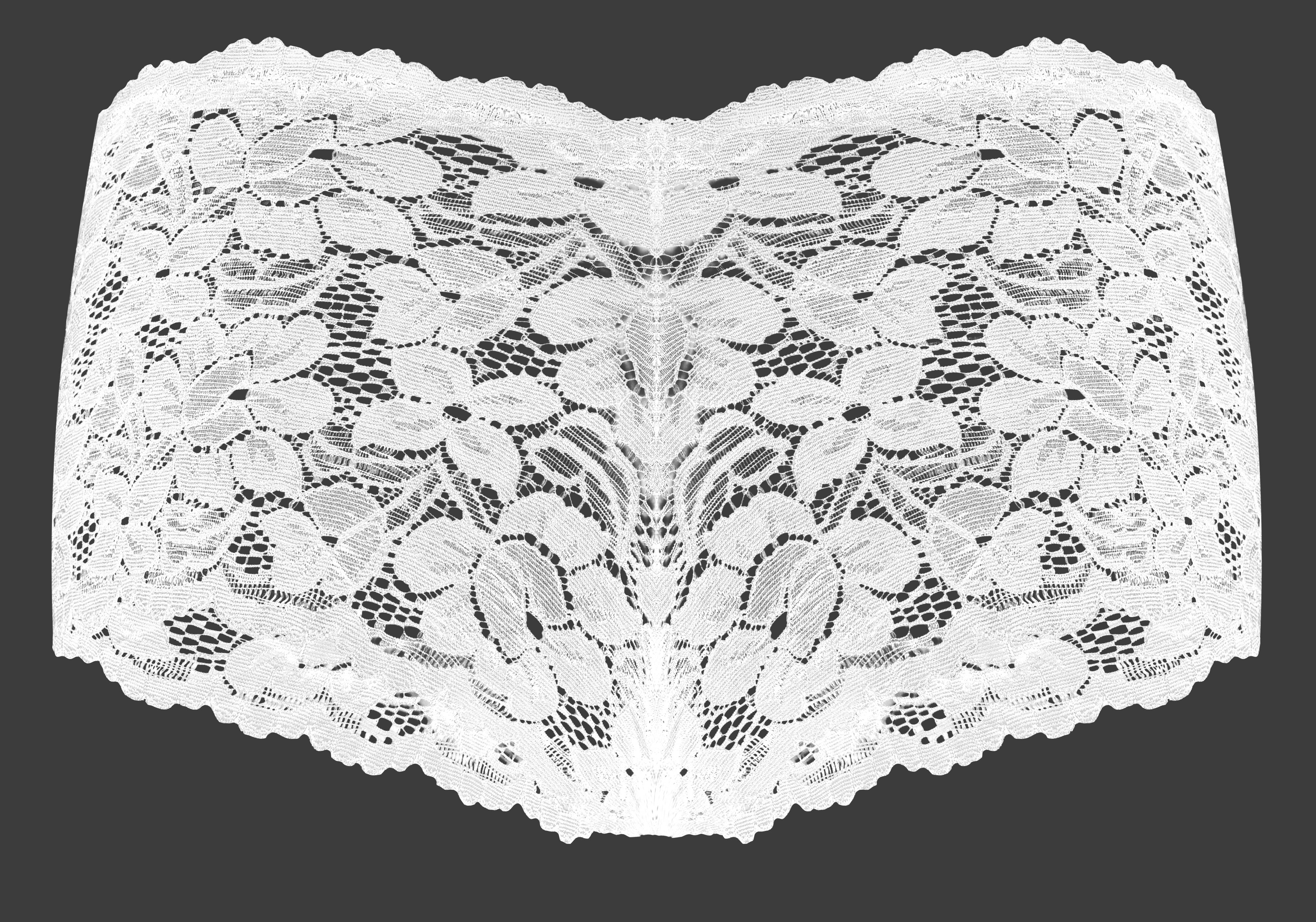 FC21641-Celočipkované nohavičky BOXERKY bielej
