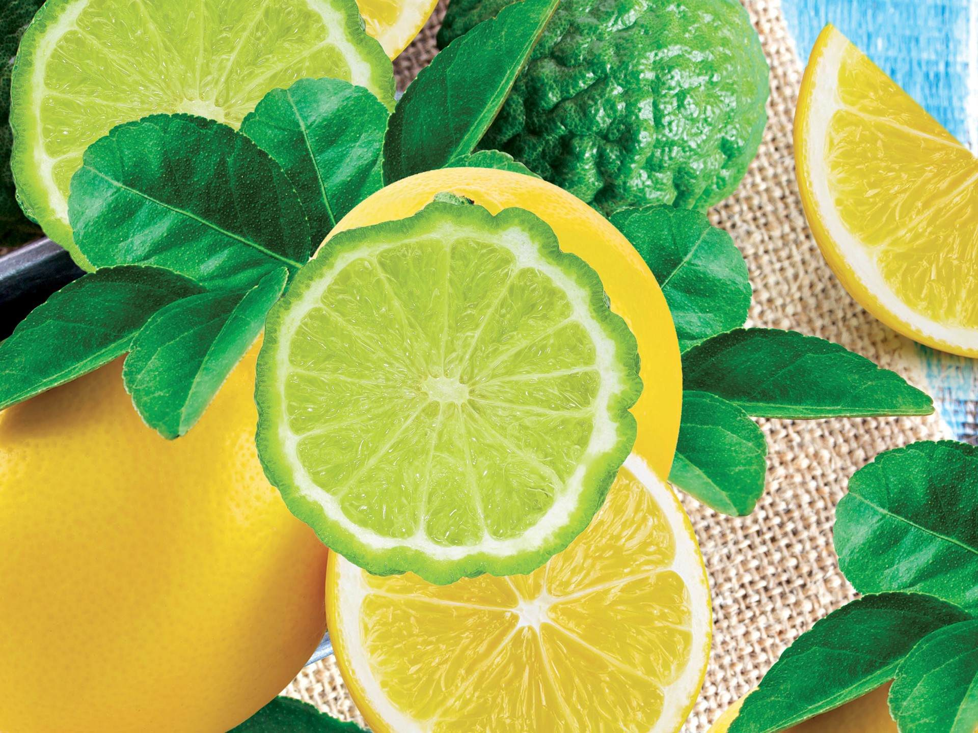 ECOBALSAM AQUATIX bergamot & lemon, koncentrát na ruční mytí nádobí s pumpičkou