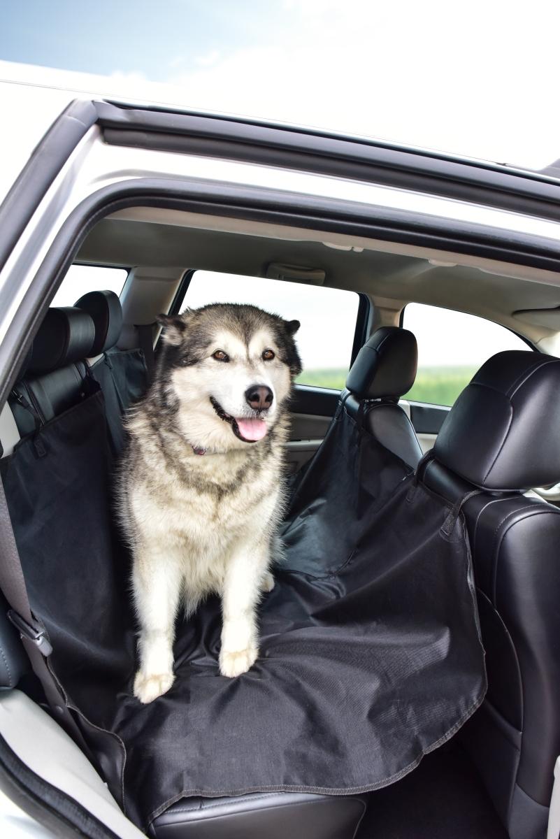 XXL OCHRANNÁ PODLOŽKA, pro psy do auta