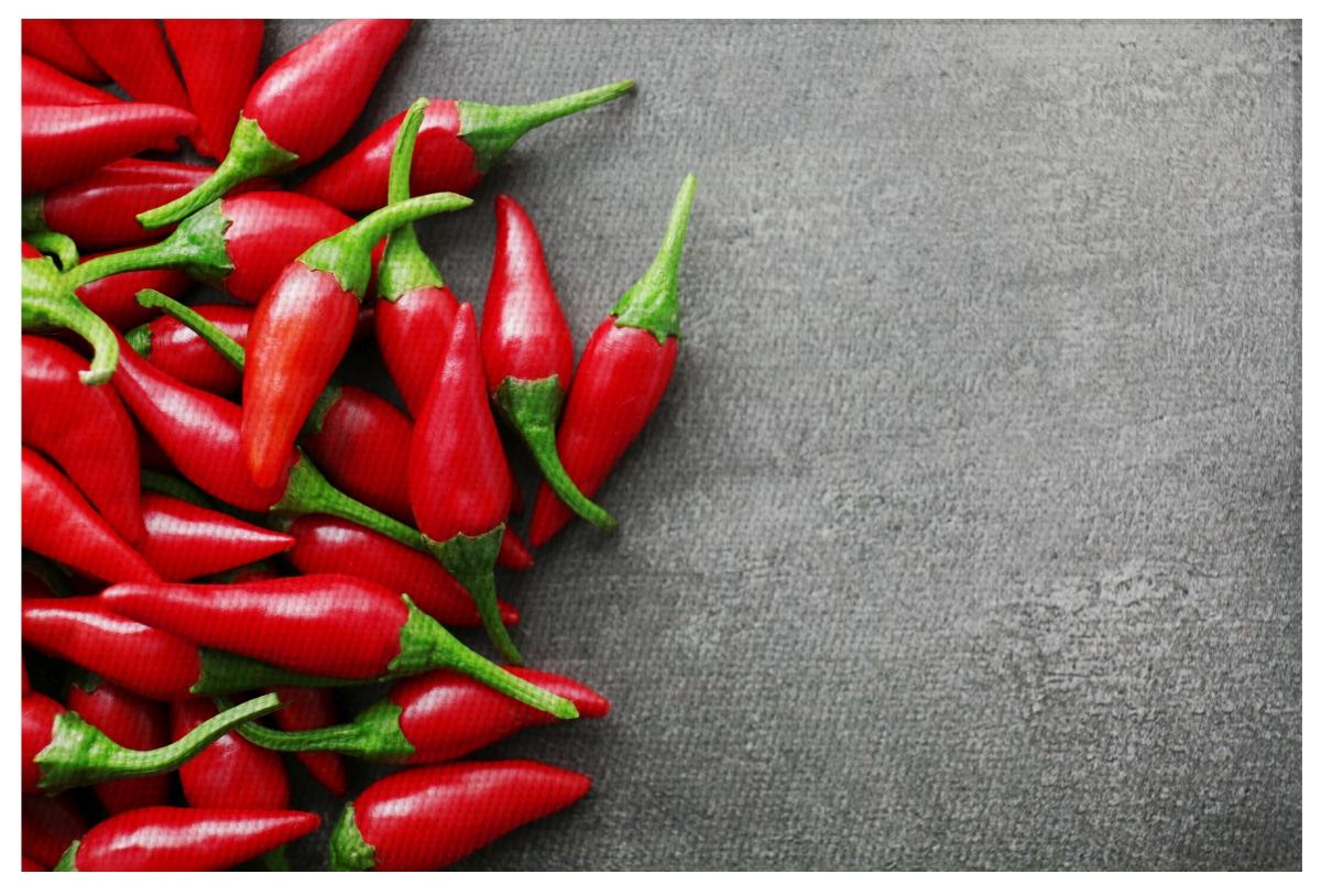 DESIGNOVÉ PROSTÍRÁNÍ omyvatelné s fotopotiskem chilli