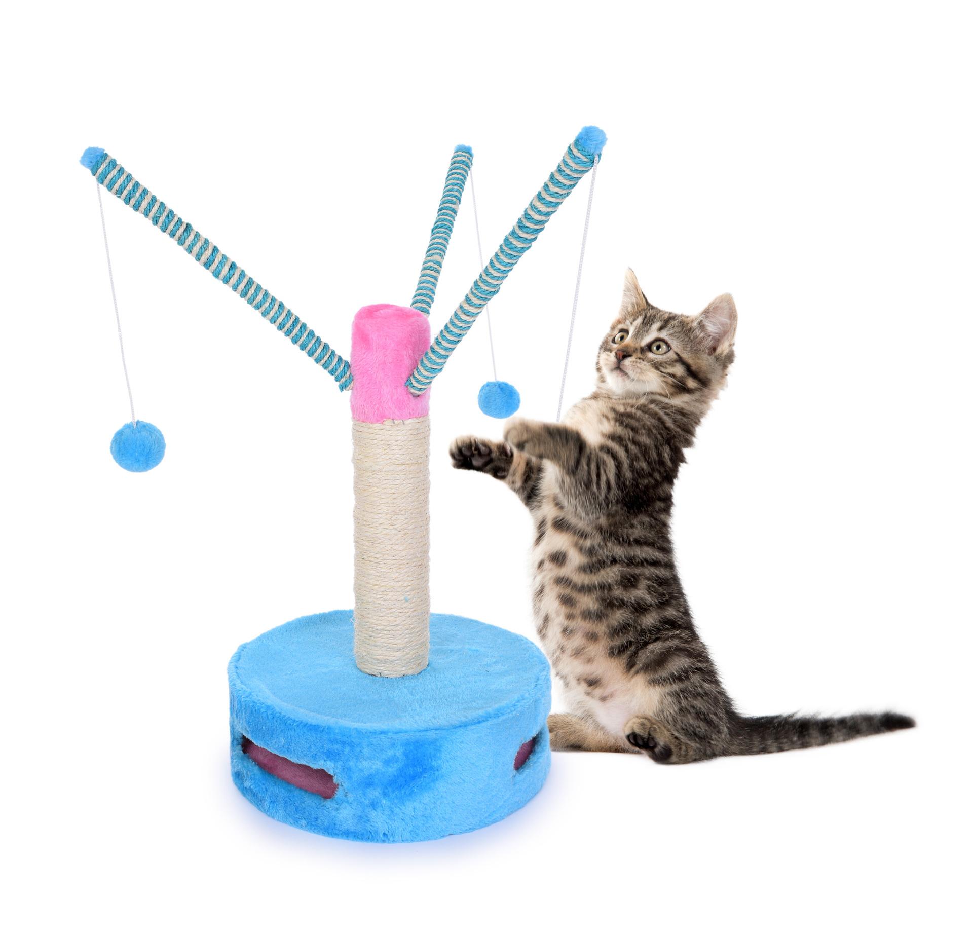 Kočičí škrabadlo, s hračkami