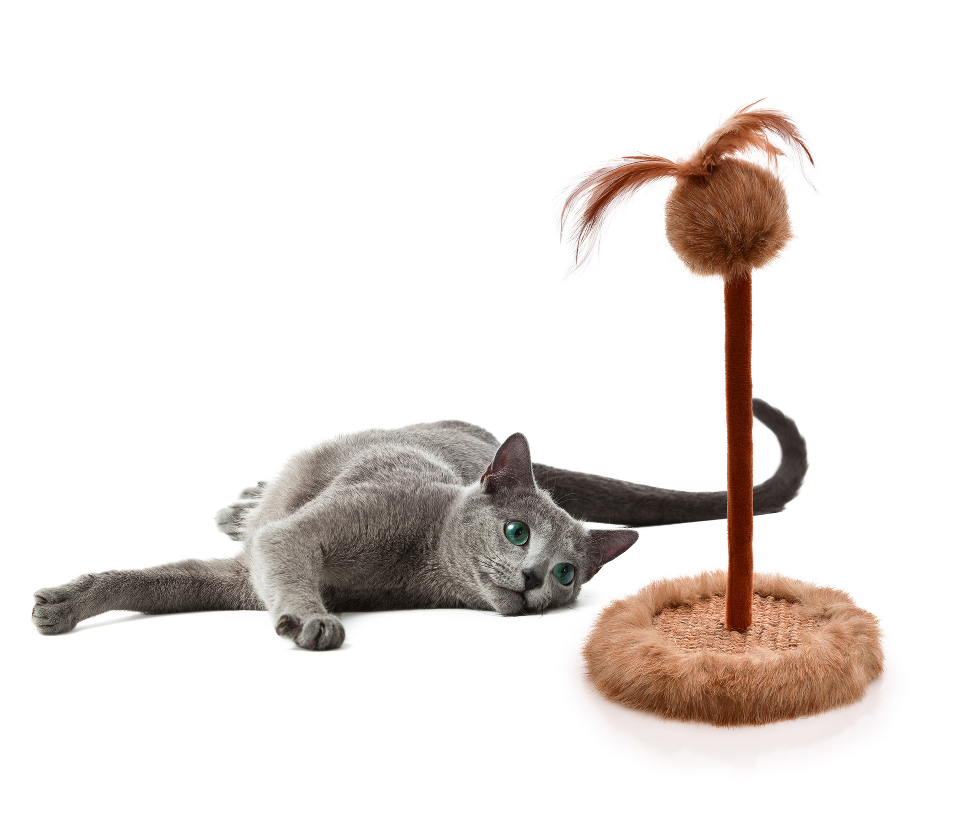 Kočičí škrabadlo, s hračkou na pružném pérku