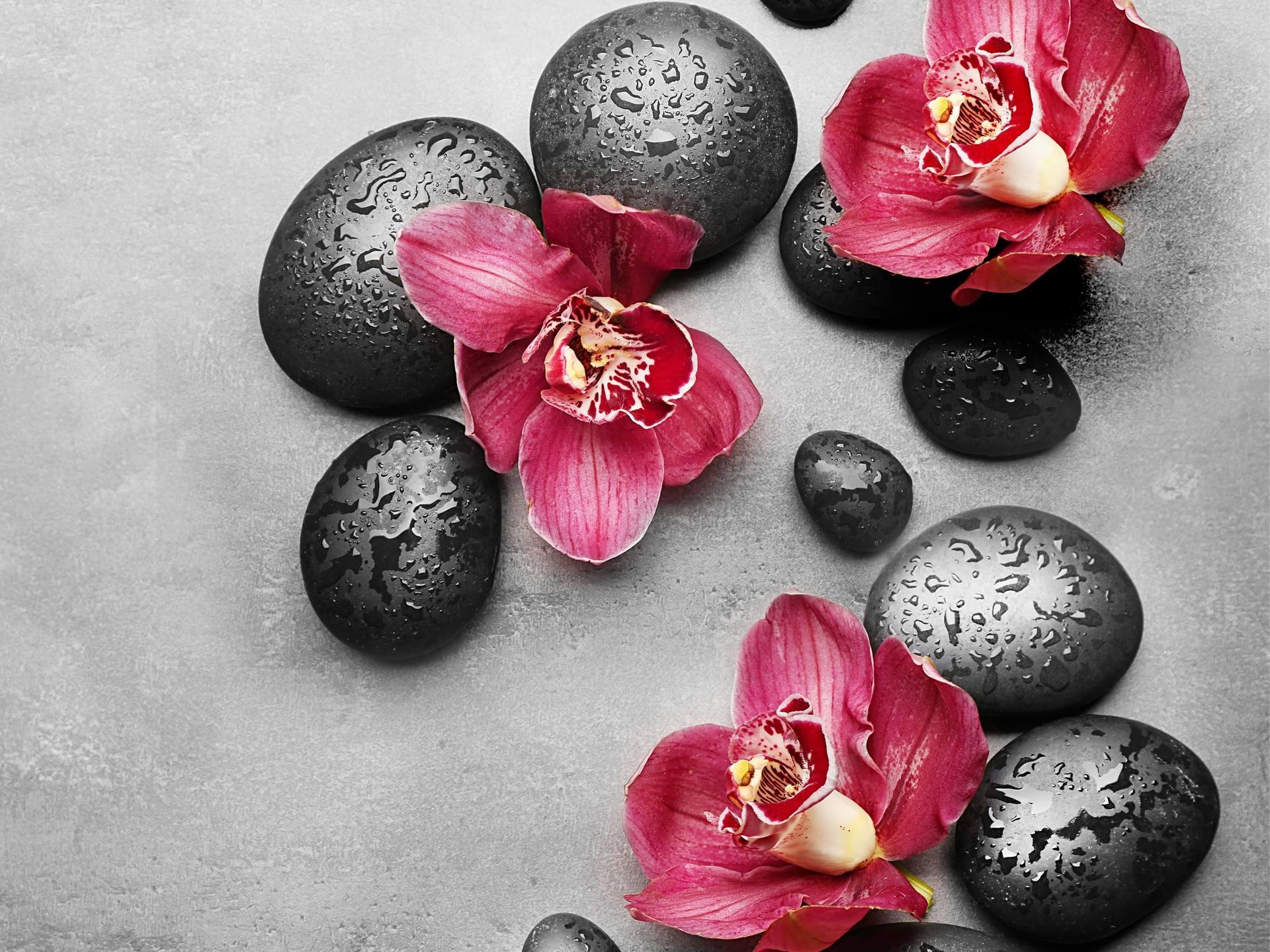 BUBLINO CREAMGEL lila fashion, tekuté mýdlo na tělo i ruce, s pumpičkou