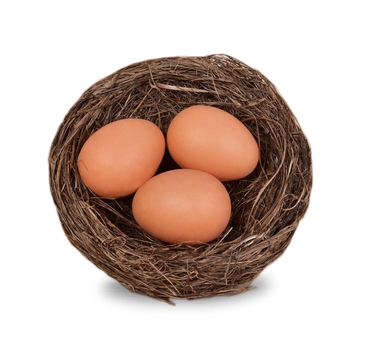 Slaměné hnízdo 15 cm, se třemi vajíčky