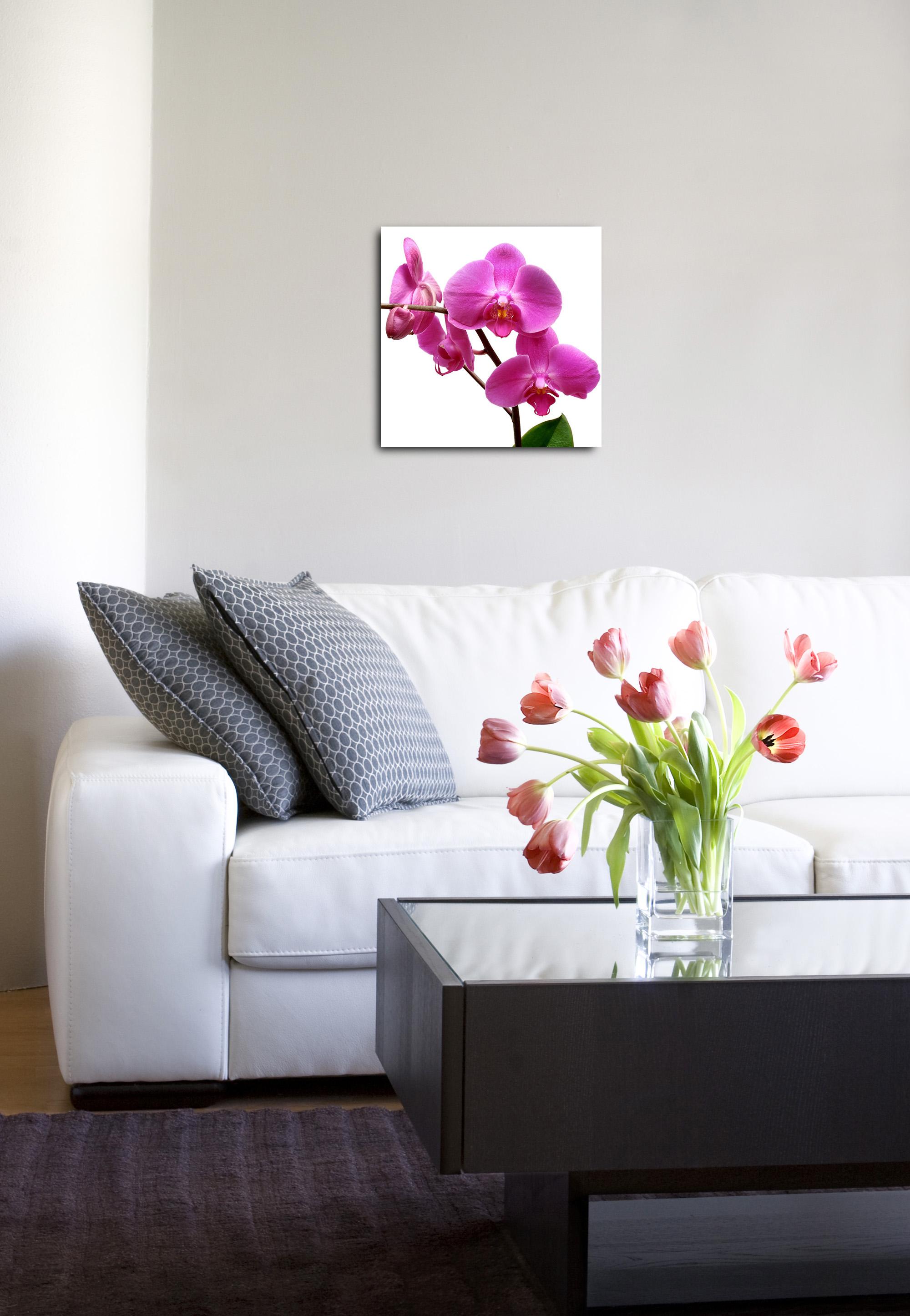 Obraz na plátně, 40 x 40 cm
