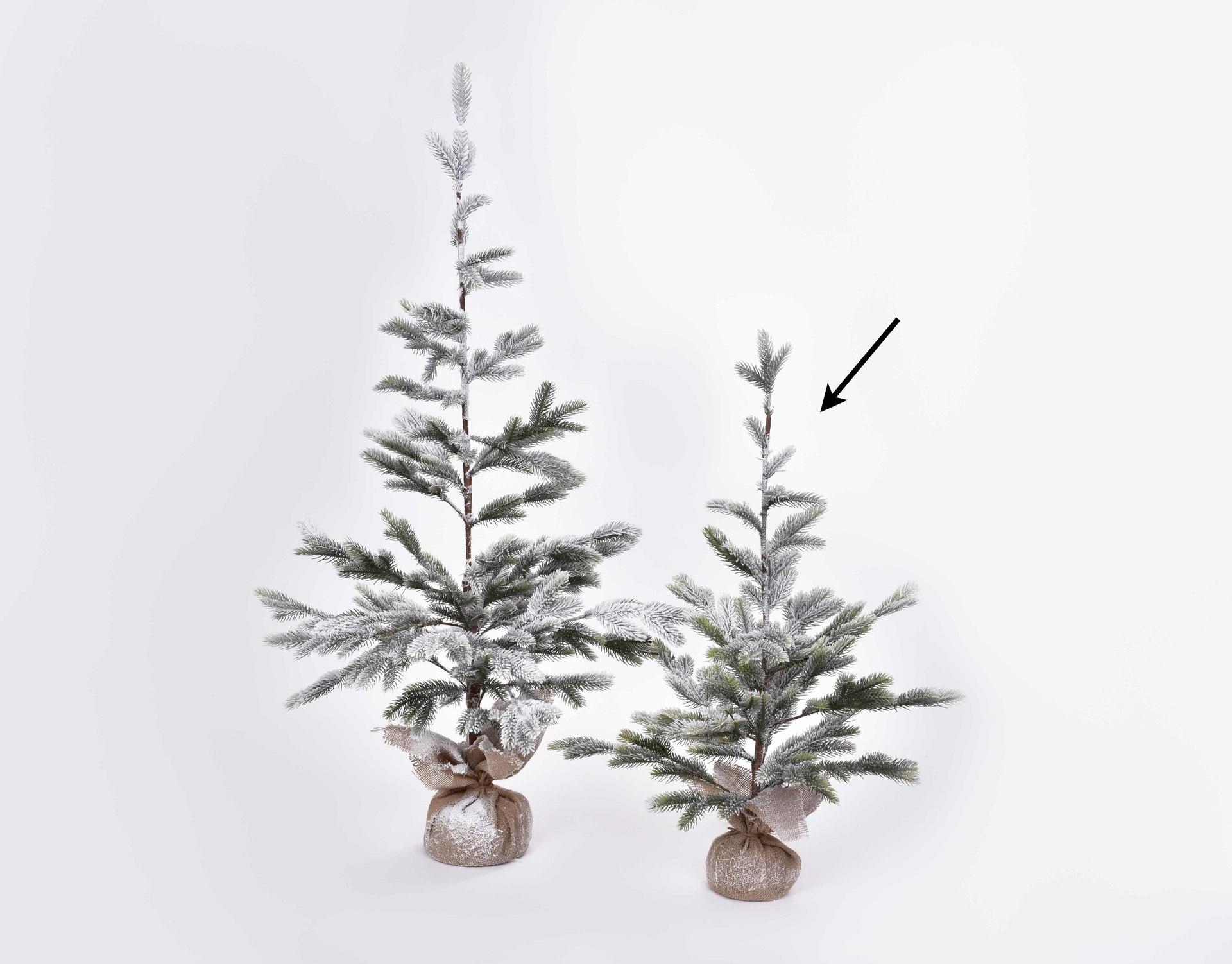 Zasnežený stromček - jedľa