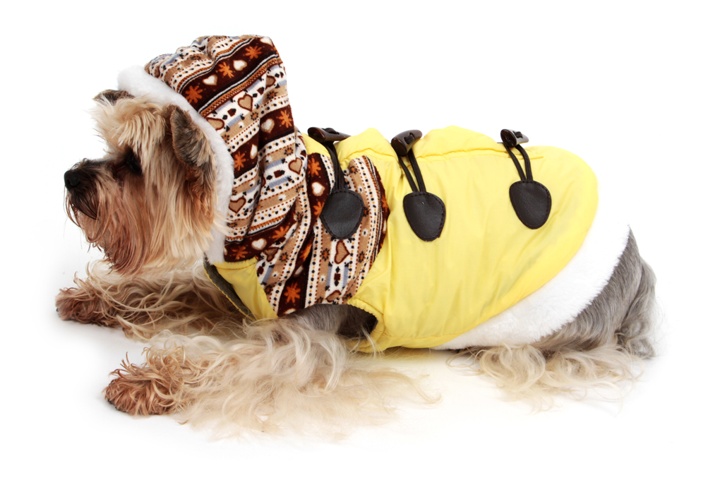 Zimní kabátek s kapucí a podšívkou žlutý S