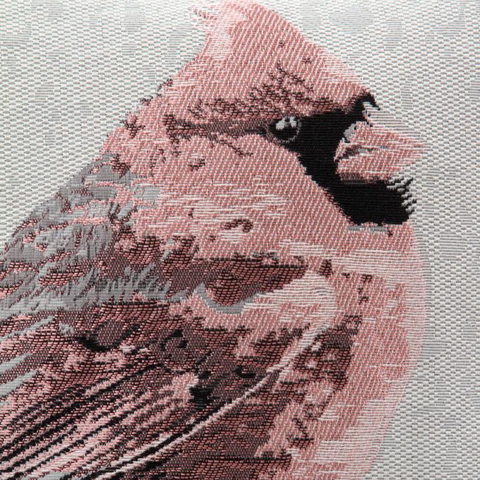 FC81211-Gobelíny poťah na vankúš obojstranný pink bird