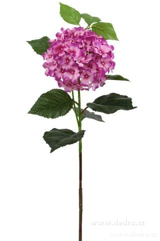 DA85664-Hortenzie ružová výška 88 cm ateliérová kvetina