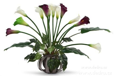 DA85672-Calla tmavofialová výška 77 cm ateliérová kvetina