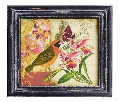 DA99162-Drevený obraz s dobovou patinou oranžovo hnedý vtáčik