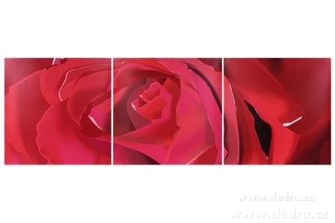 DA4599-Sada 3 obrazov ROSE 3x 60 x 60 cm