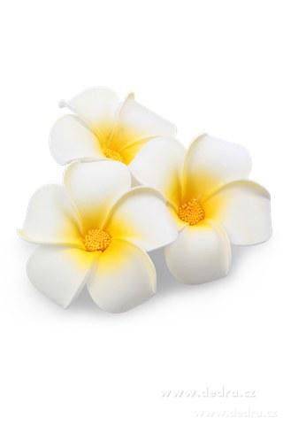 DA6012-3ks dekoratívne kvet plumeria albumu