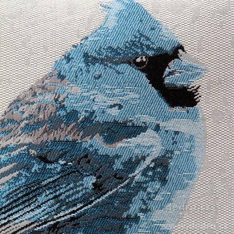 FC81213-Gobelíny poťah na vankúš obojstranný blue bird