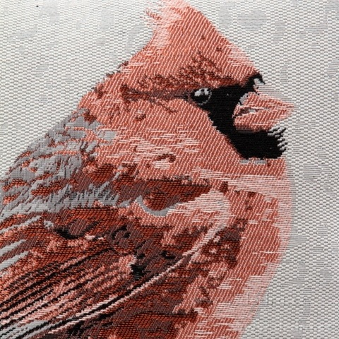 FC81214-Gobelíny poťah na vankúš obojstranný orange bird