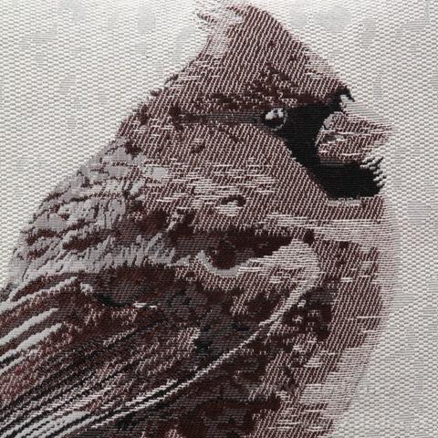 FC81215-Gobelíny poťah na vankúš obojstranný natural bird